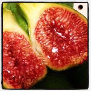 Green King Fig