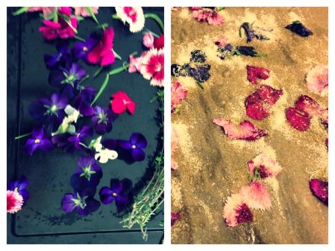 Sugared Petals